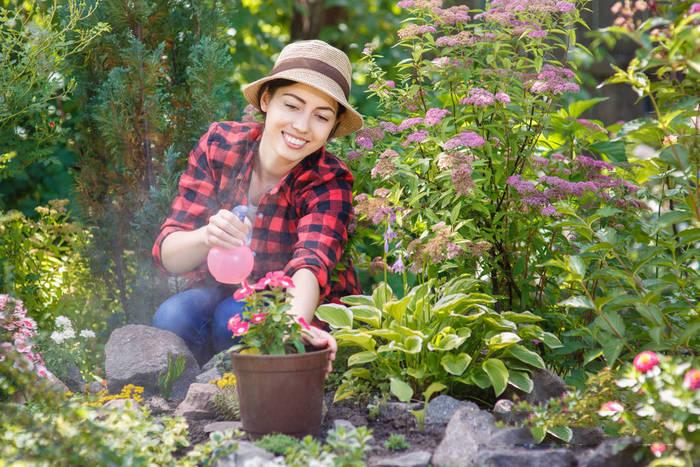 酸性水灭植物虫害