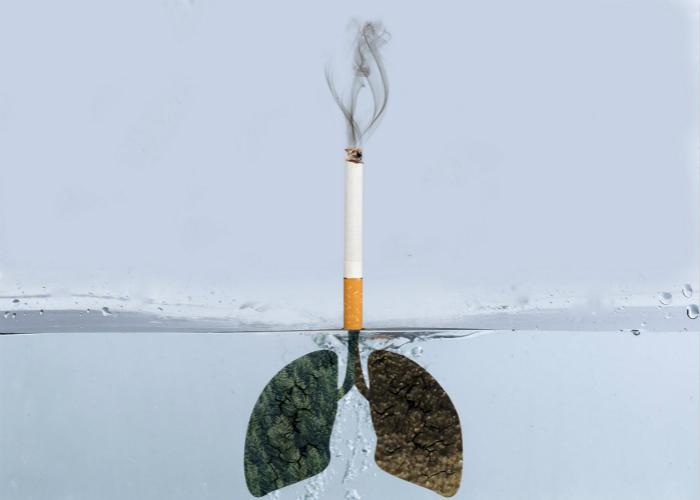 香烟对肺部危害